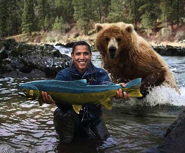 obamabearsplash2